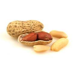 Erdnußkerne in der Schale 10kg