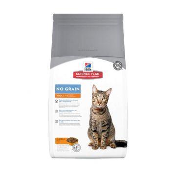 Hills Feline Adult No Grain mit Huhn 300g