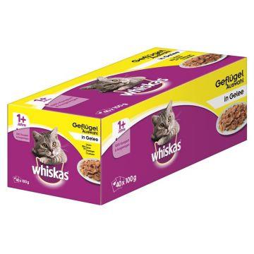 Whiskas Portionsbeutel Multipack 1+ Geflügelauswahl in Gelee 40x100g