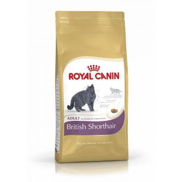 Royal Canin British Shorthair 4kg