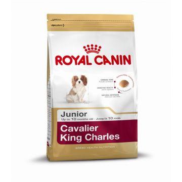Royal Canin Cavalier King Charles Junior 500g