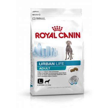 Royal Canin Lifestyle Urban Life Adult Large Dog 9kg