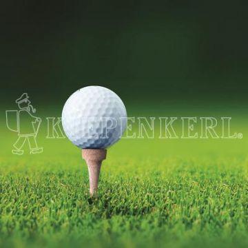 Kiepenkerl RSM 4.3 Golfrasen Abschlag 10 kg