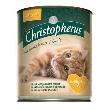 Christopherus Cat Dose Adult Geflügel pur 800g (Menge: 6 je Bestelleinheit)