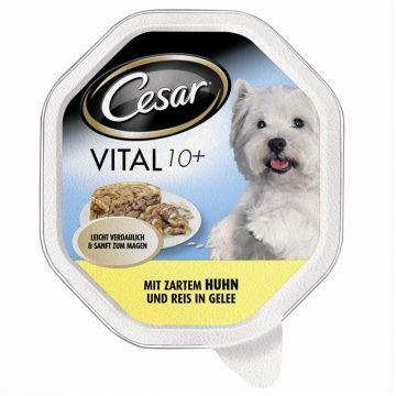 Cesar Schale Vital 10+ mit zartem Huhn & Reis in Gelee 150g (Menge: 14 je Bestelleinheit)