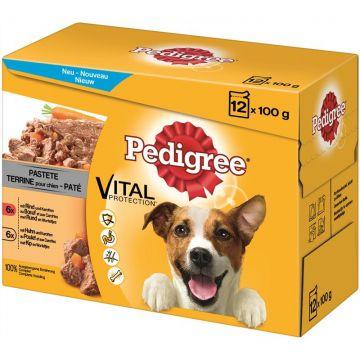 Pedigree Portionsbeutel Adult Pastete im Multipack 12x100g (Menge: 4 je Bestelleinheit)