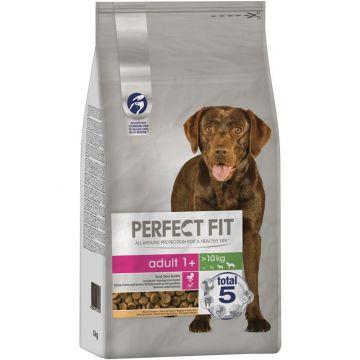 Perfect Fit Dog Adult 1+ M/L 6kg