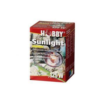Dohse HOBBY Sunlight, 125 W
