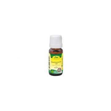 cdVet Abwehrkonzentrat mild 10 ml
