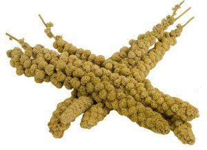 Kolbenhirse chinesisch, gelb 17,5kg (15kg netto)