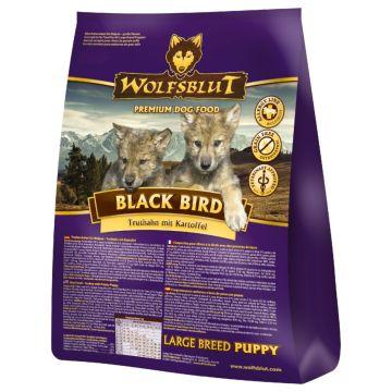 Wolfsblut Black Bird Puppy Large 15kg