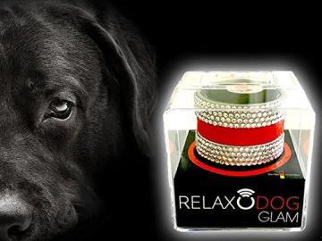 Relaxodog Glam von Relaxopet