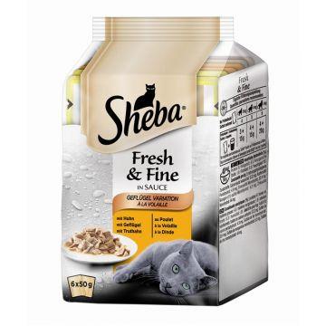 Sheba Multipack Fresh & Fine Geflügel Variation 6x50g (Menge: 12 je Bestelleinheit)
