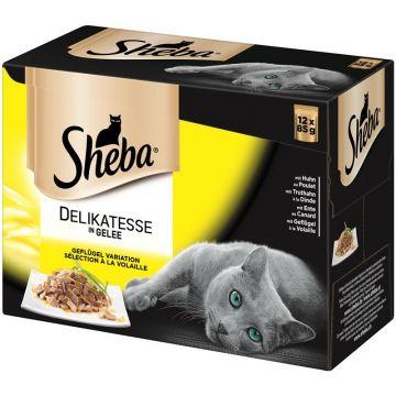 Sheba Portionsbeutel Geflügel in Gelee 12x85g im Multipack (Menge: 4 je Bestelleinheit)