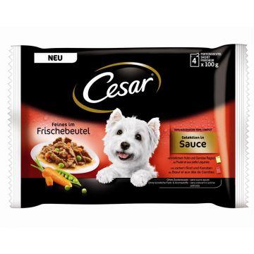Cesar Feines in Sauce 4x100g-Portionsbeutel Multipack (Menge: 13 je Bestelleinheit)