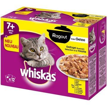 Whiskas Portionsbeutel Multipack +1 Ragout Geflügel in Gelee 12x85g (Menge: 4 je Bestelleinheit)