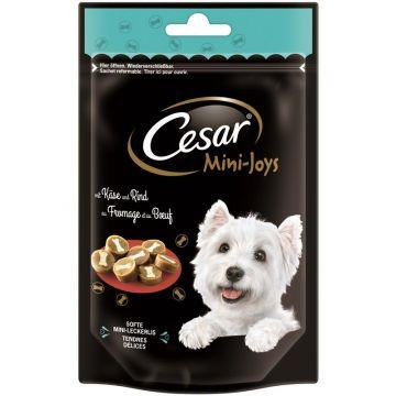 Cesar Snack Mini-Joys mit Käse und Rind 100g (Menge: 6 je Bestelleinheit)