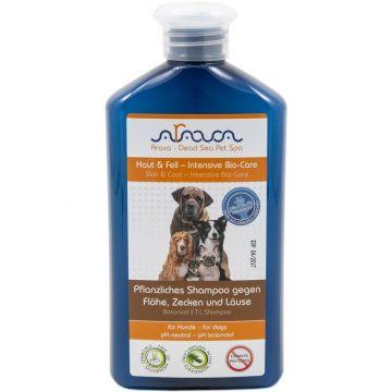 Arava Hunde pflanzliches Shampoo gegen Flöhe, Zecken und Läuse 400 ml