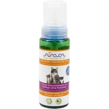 Arava Katzen Kräutershampoo zur Fellpflege für junge & ausgewachsene 250 ml