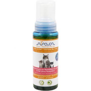 Arava Katzen Schaumshampoo zur Revitalisierung von Haut & Fell ohne Ausspülen 250 ml