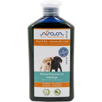 Arava Hunde Kräutershampoo zur Fellpflege für Welpen 400 ml