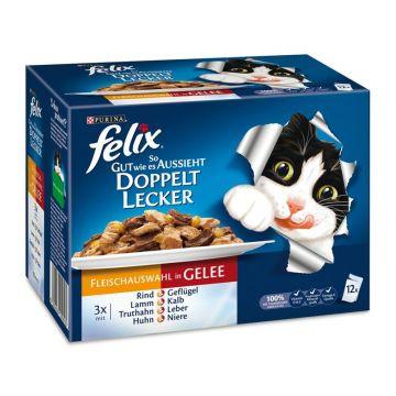 Felix So gut wie es aussieht 12er MP Doppelt lecker mit Fleisch, 12x100 g (Menge: 6 je Bestelleinheit)