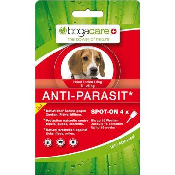 Bogacare Anti-Parasit Hund klein 4x1,5ml