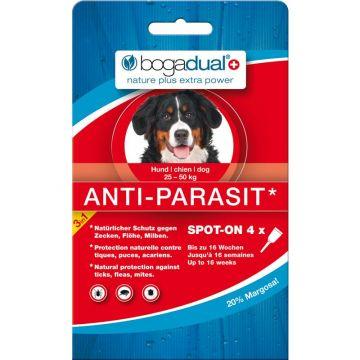 Bogadual Anti-Parasit Hund groß 4x2,5ml