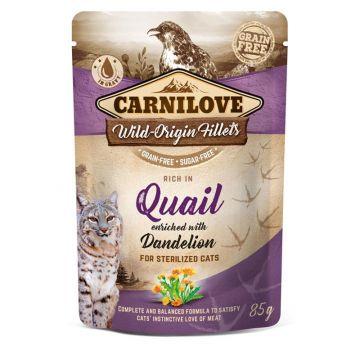 Carnilove Cat Pouch - Quail with Dandelion 85g (Menge: 24 je Bestelleinheit)