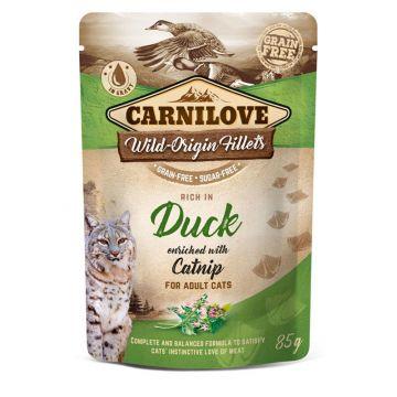 Carnilove Cat Pouch - Duck with Catnip 85g (Menge: 24 je Bestelleinheit)