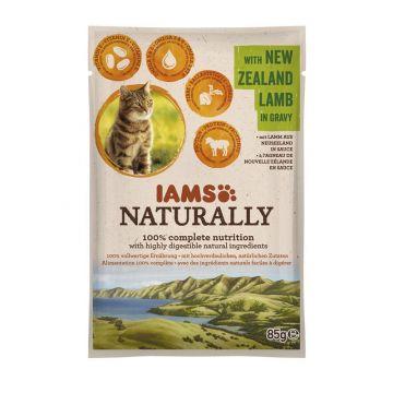 IAMS Naturally Adult Nassfutter PB 85g Neuseelandlamm  in Sauce