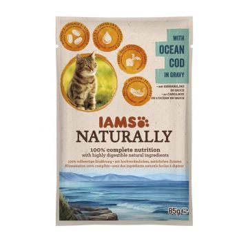 IAMS Naturally Adult Nassfutter PB 85g Kabeljau in Sauce