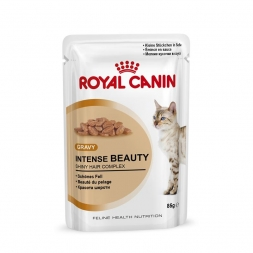 Royal Canin Frischebeutel Intense Beauty in Sosse Multipack 12x85g