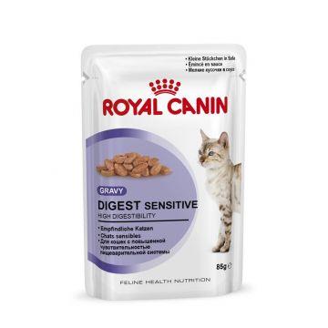 Royal Canin Frischebeutel Digest Sensitive in Sosse Multipack 12x85g