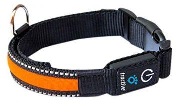 TRACTIVE LED Halsband medium orange